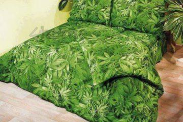 cannabisbed