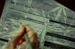 Marijuana Tax CRA