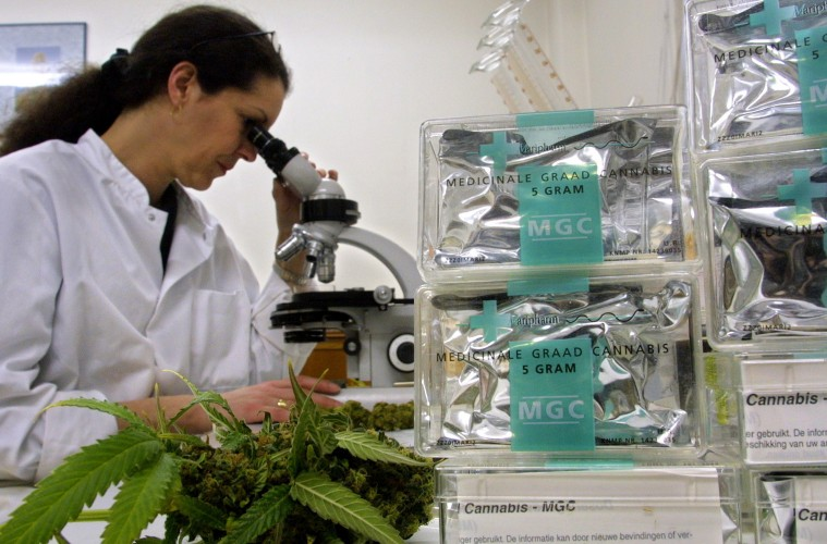 California Lab Integrates Cannabis Results with Weedmaps