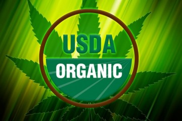 organiccanna