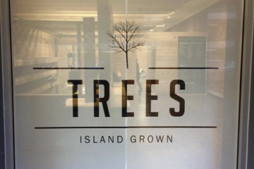 trees dispensary