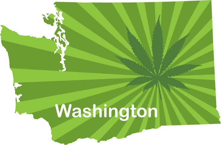 Image result for Washington State Cannabis