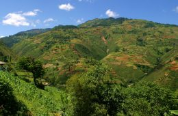 Mountainous_Farming_Plots_Haiti
