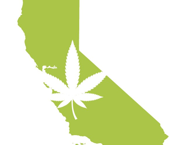 cannabis in california