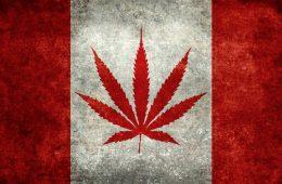 canadaweedflag