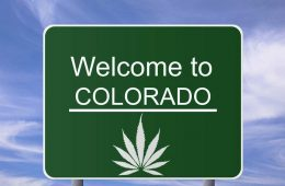 colorado_marijuana1