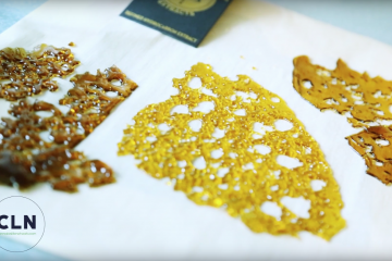 The Dab Camp - Dab Fest 2016 People's Choice Extract Cup