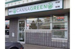 the-cannagreen-marijuana-dispensary-opened-at-33-roydon-plac