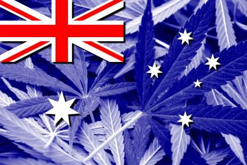 Australia Flag on cannabis background. Drug policy. Legalization of marijuana