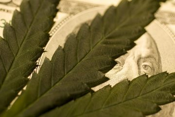 Marijuana leaf on US currency