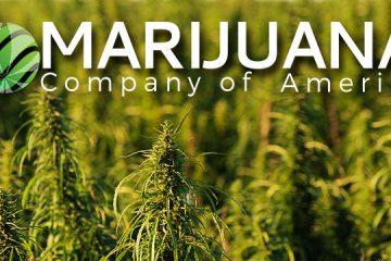 marijuana-company-of-america-mcoa