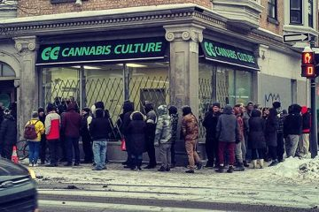 http://www.cannabisculture.com/wp-content/uploads/2016/12/line-up-cannabis-culture-montreal.jpg