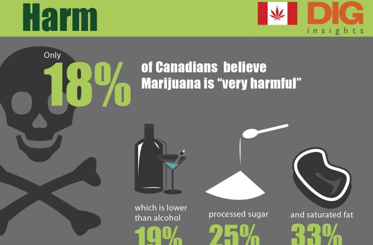 Canadians Believe Sugar More Harmful Than Cannabis