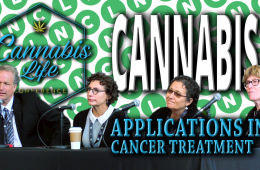 Panel - Cannabis Applications in Cancer Treatment