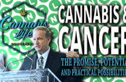 Cannabis and Cancer: The Promise, Potential, and Practical Possibilities with Dave Hepburn