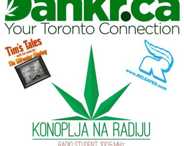 Expert Joints LIVE!: Our Weed Is Dankr