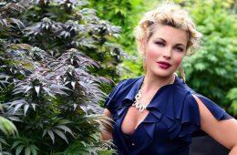 Photo courtesy of marijuana.com
