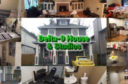 delta 9 house