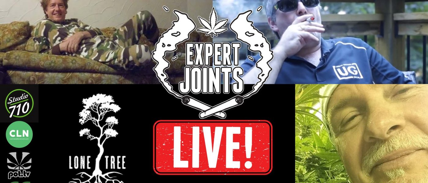 EXPERT JOINTS LIVE!: Here We Go Again