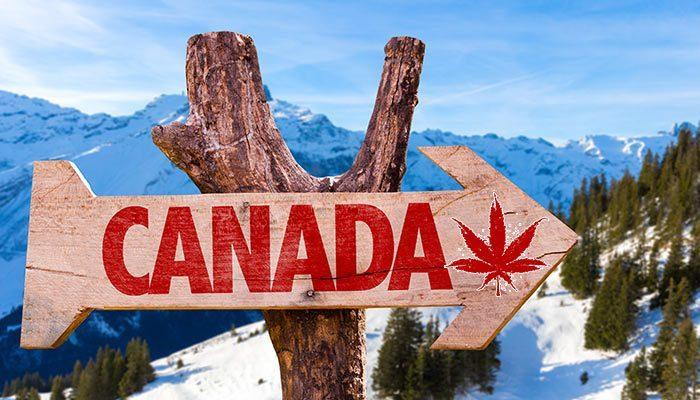 Canada to decriminalise dagga! | i420cpt