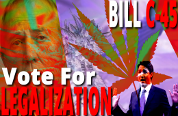 BillC45_VoteForLegalization_1080p 2222