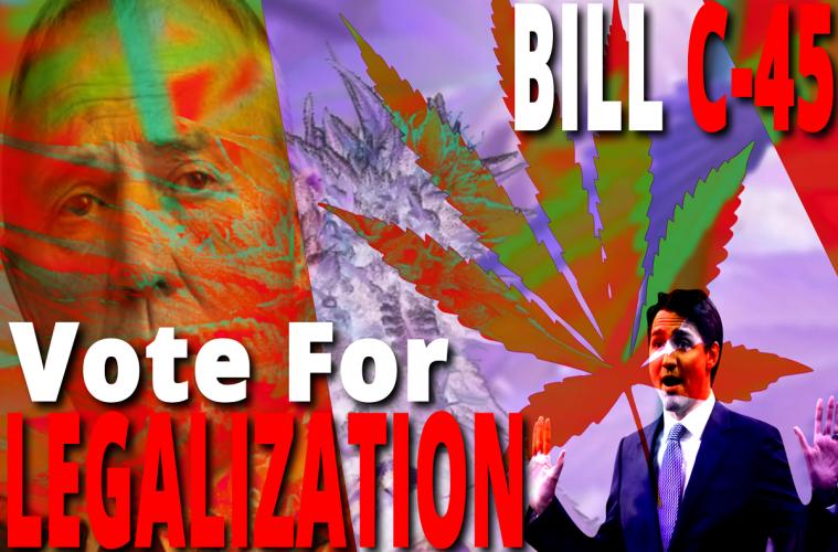 BillC45_VoteForLegalization_1080p 2222