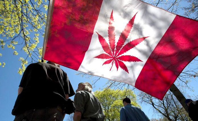 Cannabis-Legalisation-ca-02-1140x700-696x427