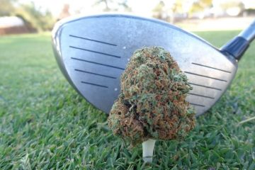 golf cannabis