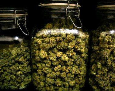 preserve cannabis