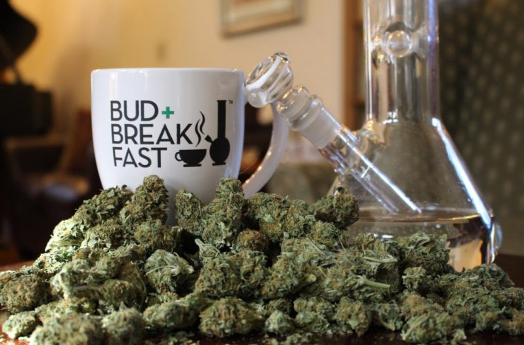 bud and breakfast
