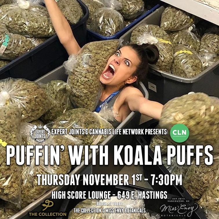 koala puffs