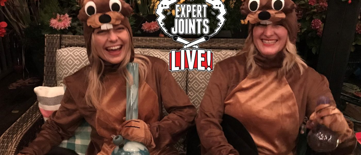 Baked Beavers on Expert Joints