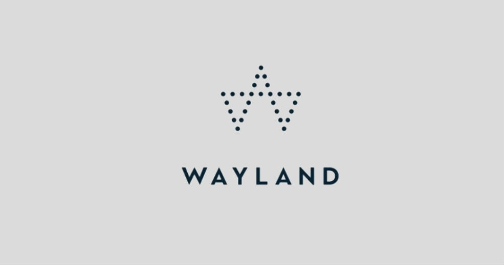 Creditor Protection sought by cannabis company Wayland Group Corp.
